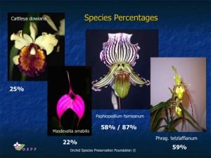 Species Percentages ...